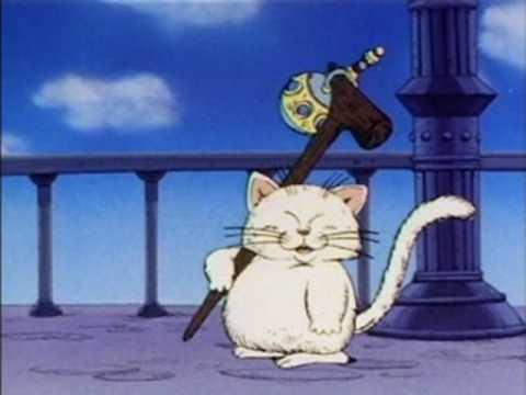 """thần mèo korin và """"nước thánh"""""""