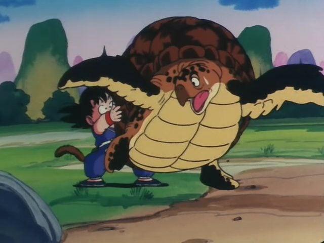 Turtle (con Rùa)